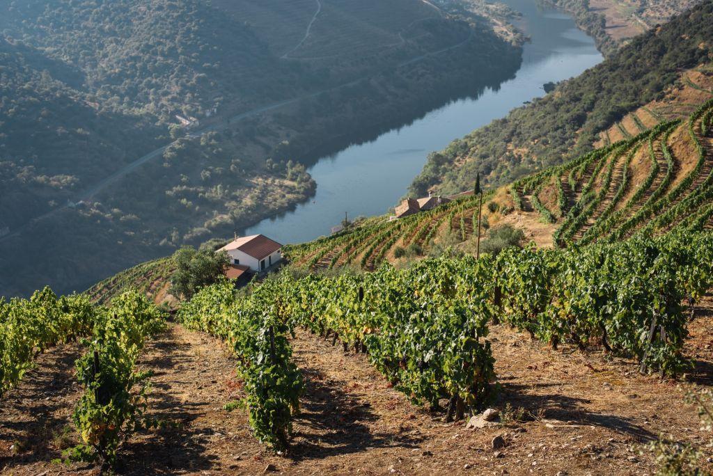 La vallée du Douro, Porto, Portugal